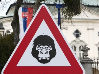 gorilla_nem